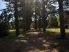 Estación Forestal 25 de Mayo