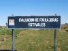 forrajes-y-pastura-1