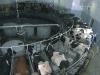 industria-lechera