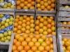 023_naranjas