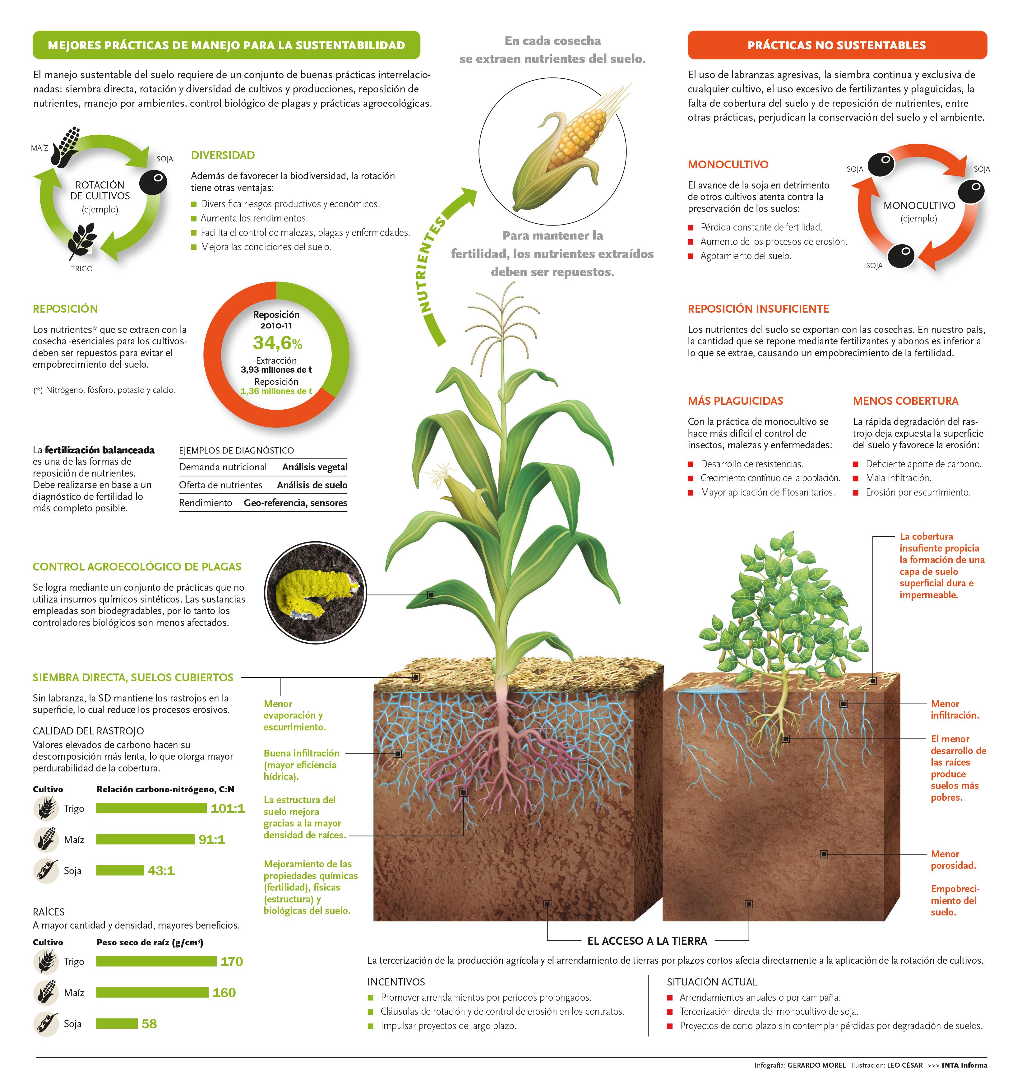 Buenas prácticas para la preservación del suelo