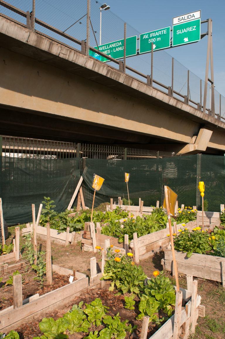 INTA_Informa_Agricultura_urbana (6)