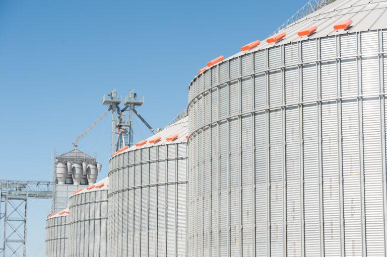 INTA_Informa_Agroindustria (15)
