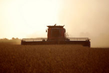 INTA_Informa_Agroindustria (20)