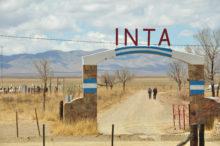 INTA_Informa_Institucional (13)