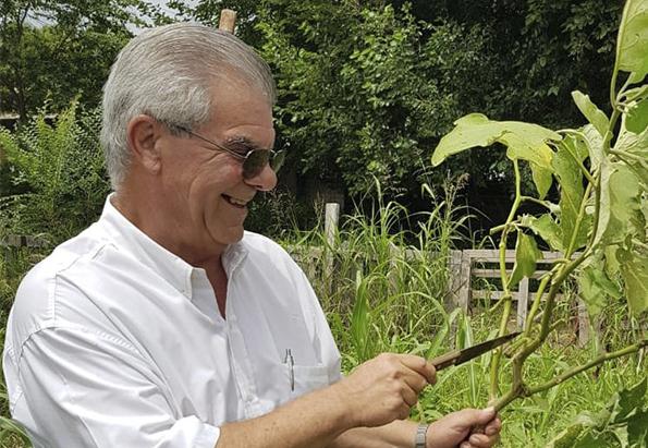 Con bioinsumos se mejoran los rindes de los cultivos