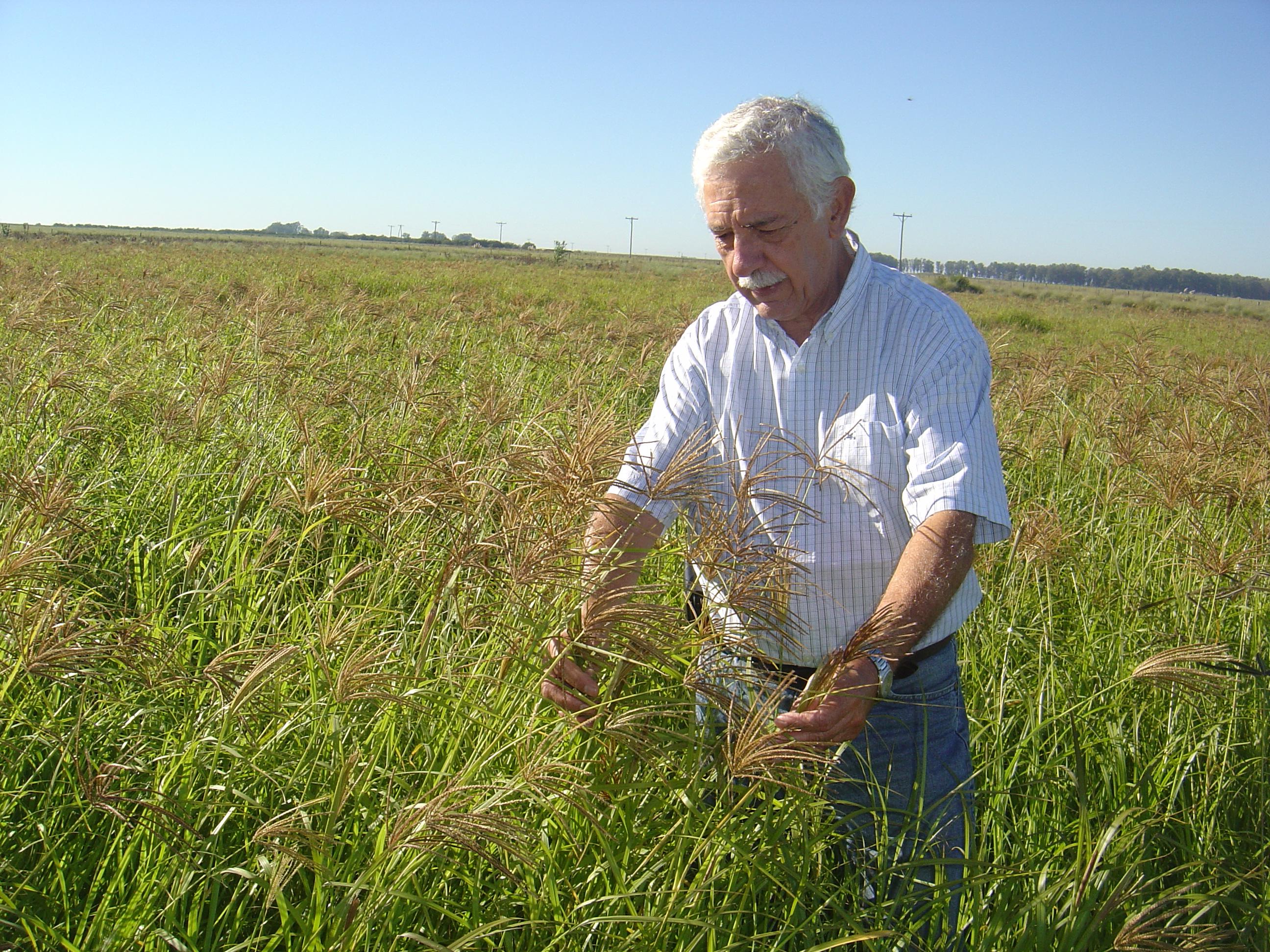 El 36 % del suelo argentino está afectado por erosión