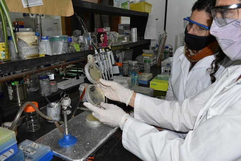 El INTA y Laboratorios Bagó suman esfuerzos para investigar sobre COVID-19