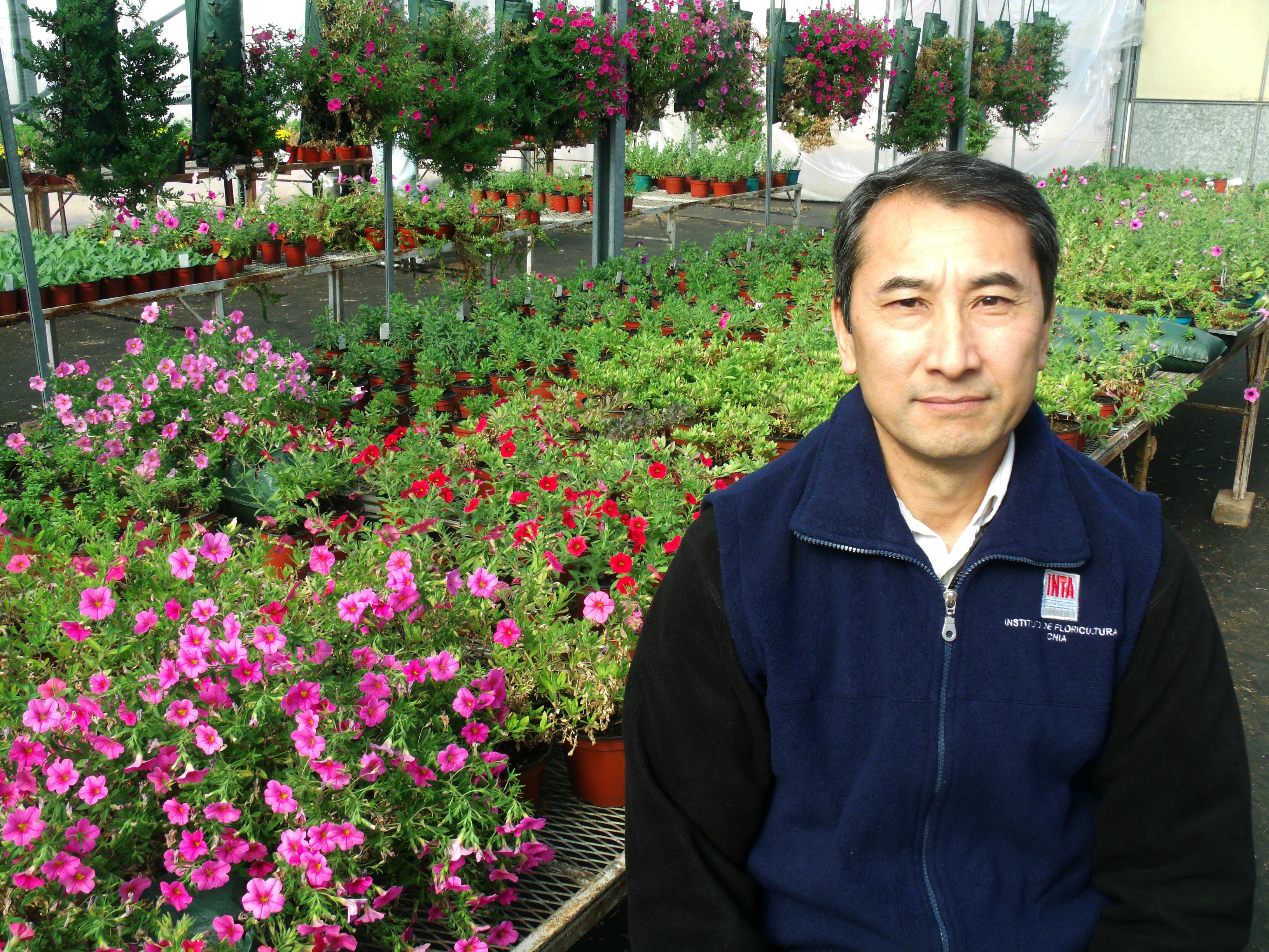 Tres opciones de flores para sumar color al jardín