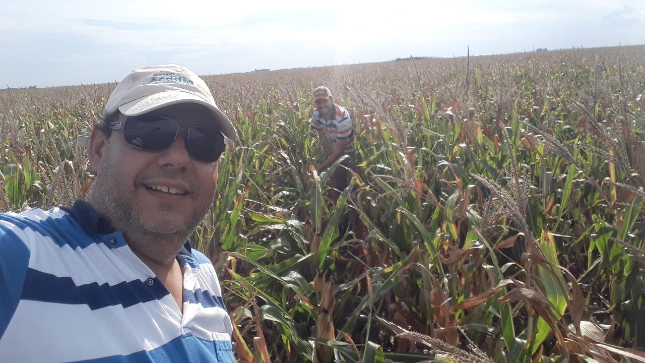 El trigo estará limitado por el déficit hídrico