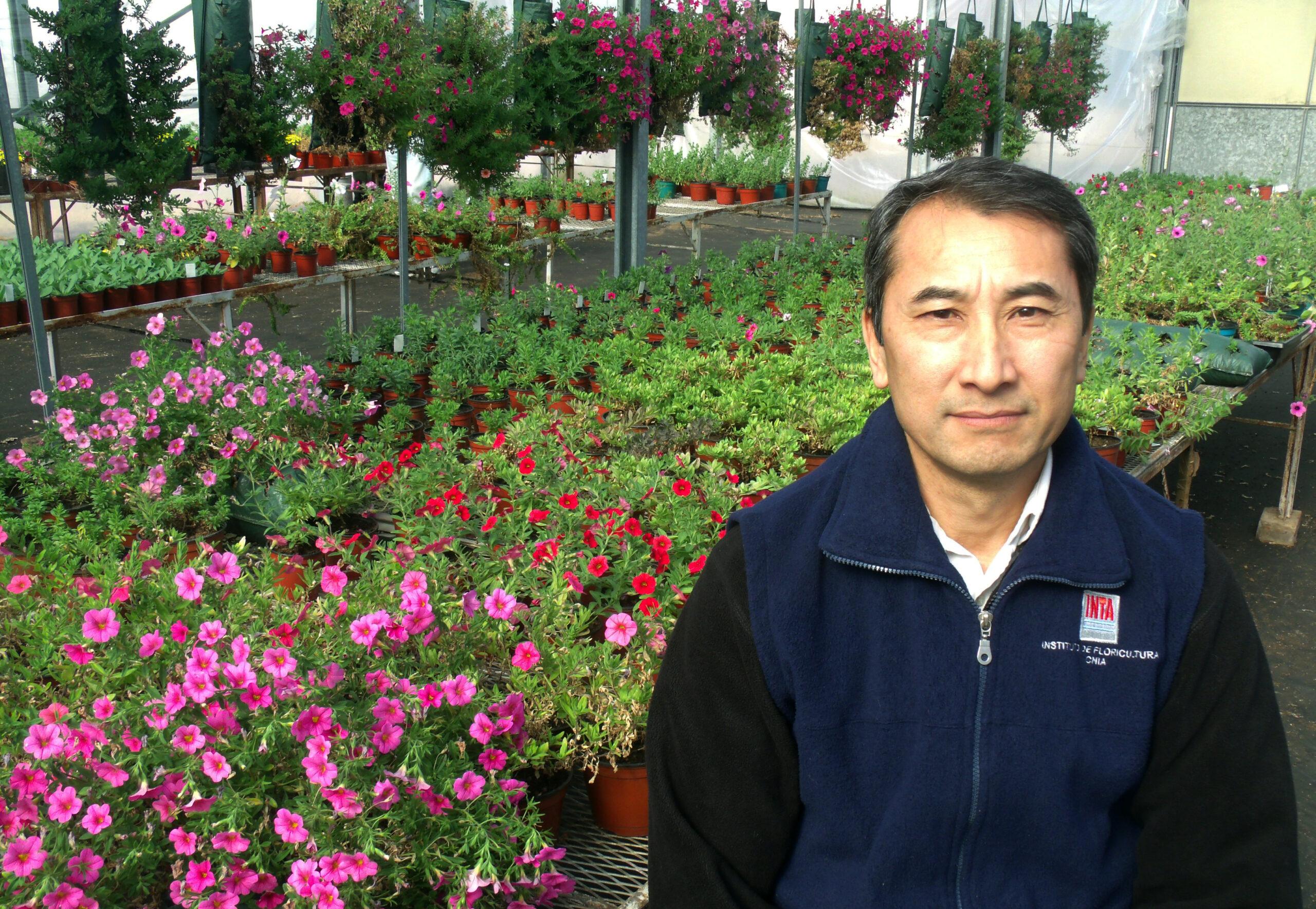Cuatro nuevas variedades de flores nativas mejoradas